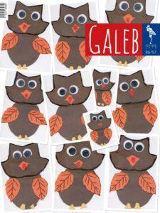 Galeb 66-2