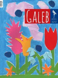Galeb 63-7