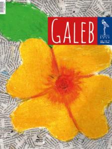Galeb 63-8