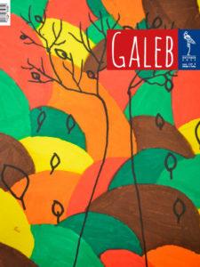 Galeb 64-2