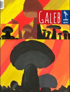 Galeb 64-3