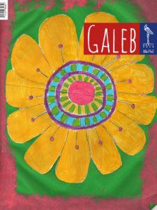 Galeb 64-8